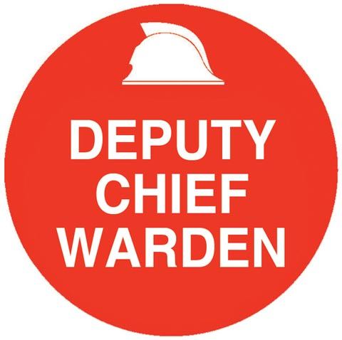 Decal - Vinyl SS Helmet Emblem 56mm - 'Deputy Chief Warden'