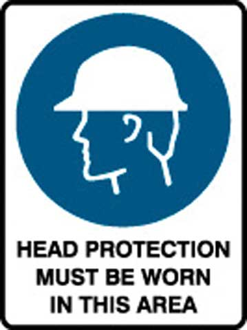 Sign - Poly 'Head Protection Must Be Worn In This Area' 450 x 600